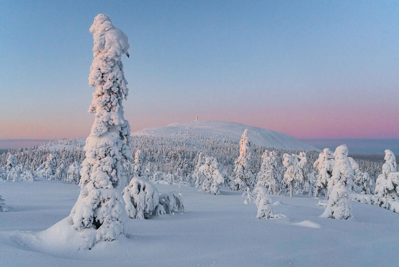 Schweizer GrafikFinnisch Lappland