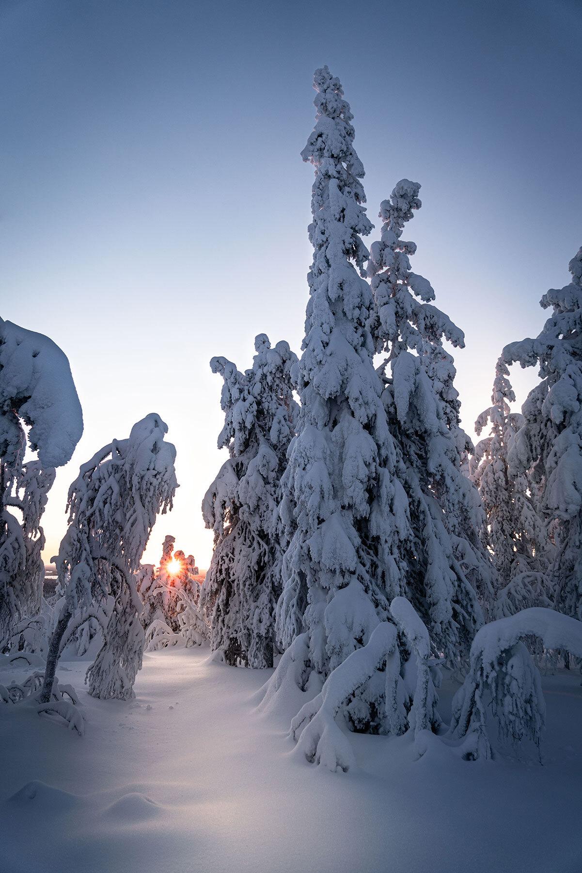 Schweizer Grafik Finnisch Lappland